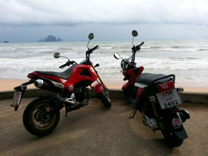 a short ride with the honda zoomer x and grom 125. Black Bedroom Furniture Sets. Home Design Ideas