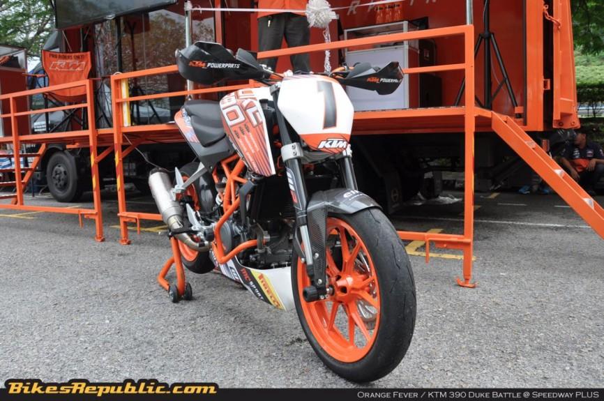 orange_fever_032
